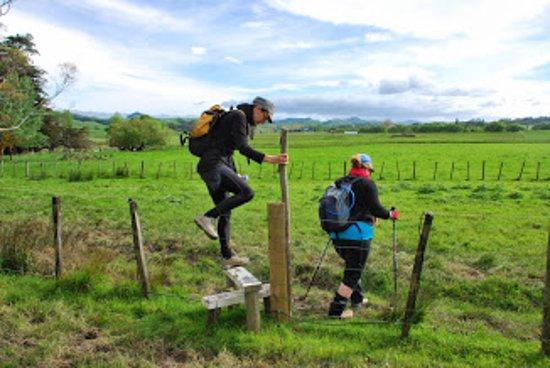 Whareama, نيوزيلندا: Great fun on the Whareama Coastal Walk