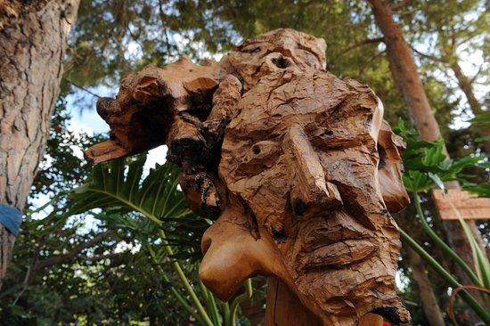 Ein Hod, Israel:     9faces   of olive root