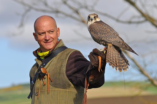 Crail, UK: Steve, the Scottish Countryman, and a saker