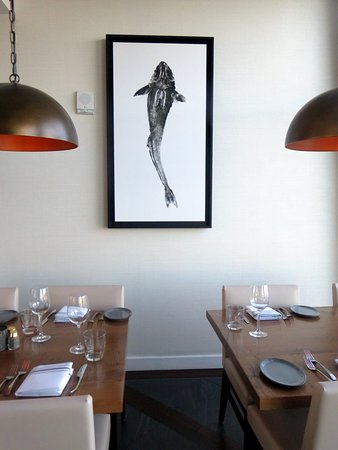 . interior decor   Picture of Paddlefish  Orlando   TripAdvisor
