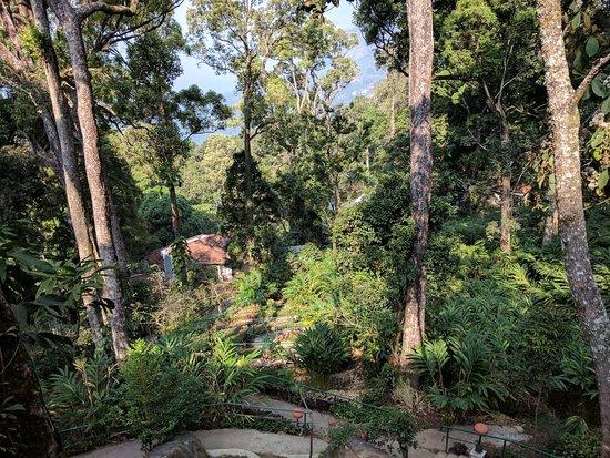 Haripur, India: IMG_20180325_090631_large.jpg