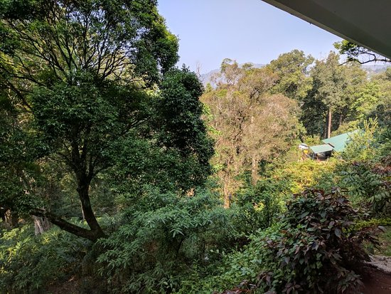 Haripur, India: IMG_20180325_093024_large.jpg