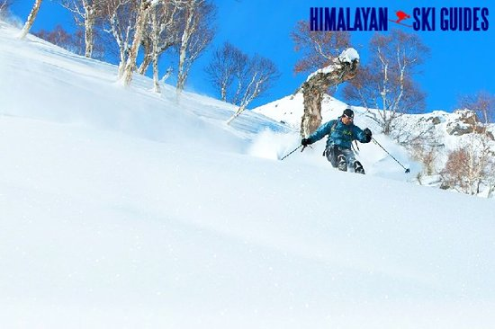 Himalayan Ski Guides: Experience skiing with light and deep powder snow