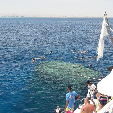 El Tour Del Mar Rojo Picture Of Egyptus Tours Giza Tripadvisor