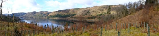 Thirlmere, UK: The view from halfway up Great How - Just across the road from the Lodge in the vale