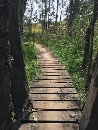 Johannesburg, África do Sul: Boardwalk