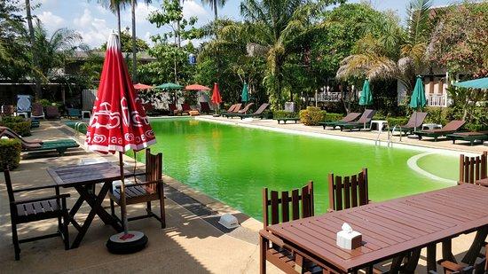 Lanta Klong Nin Beach Resort: La piscine verte et inutilisable... Dommage quand il fait 35 degrés !