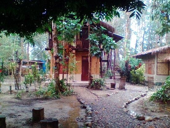 Nameri Eco Camp: Our room