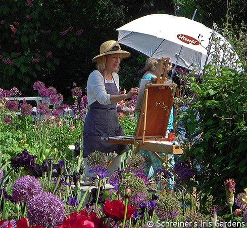 Schreiner's Iris Gardens: Painters enjoy the colorful setting.