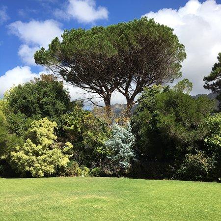 Bishopscourt, South Africa: photo1.jpg