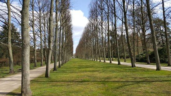 Französischer Garten Picture Of Franzosischer Garten Celle