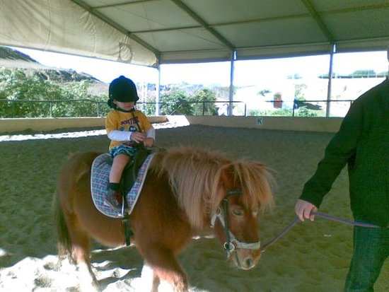 Finca La Alegria: Pony ride for the little ones ...most enjoyable.