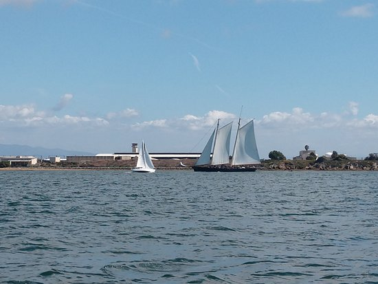 San Diego Seal Tours: replica of the first America's Cup winner