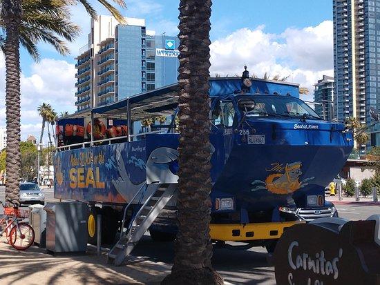 San Diego Seal Tours: Seal Tour amphibious vehicle