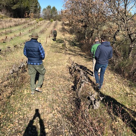 Truffle Hunting at Les Pastras : photo1.jpg