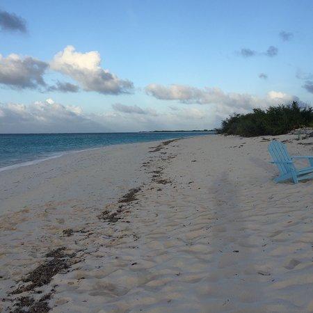 Bliss on the Beach