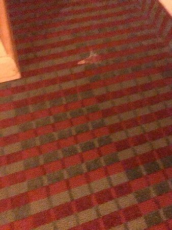Rodeway Inn: The carpeting was nasty