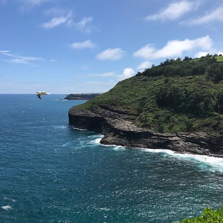 Kilauea Point National Wildlife Refuge: Beautiful scenery