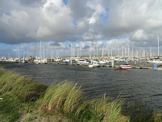 Het Strand Van Ijmuiden Aan Zee Jachthaven Picture Of Het Strand