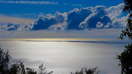 Mediterranean Steps: View from pathway