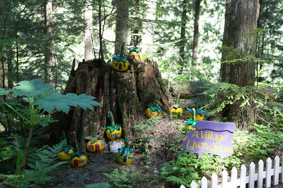 The Enchanted Forest: cute scenes