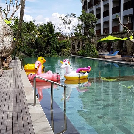 Element by Westin Bali Ubud  New Hotel in Ubud