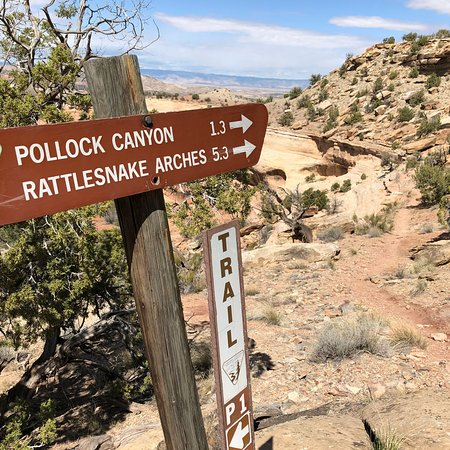 Rattlesnakes In Colorado Map.Rattlesnake Canyon Fruita 2019 All You Need To Know Before You