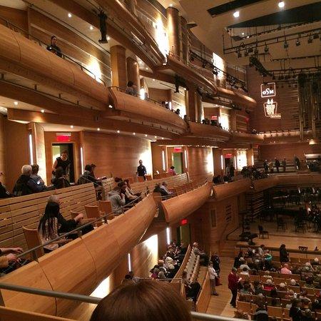 L'Orchestre Symphonique de Montreal (OSM): photo1.jpg