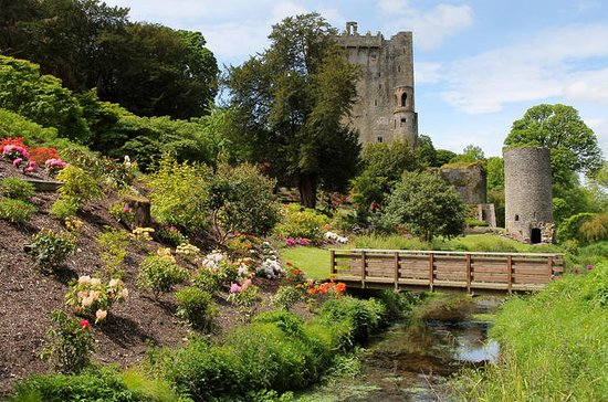 Blarney Castle and Cork Day Trip from...