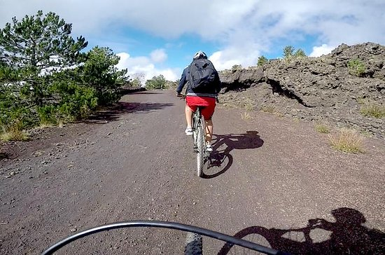 5-Hour Mount Etna Mountain Biking...