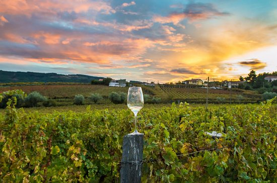 Private Full-Day Wine Country Tour...
