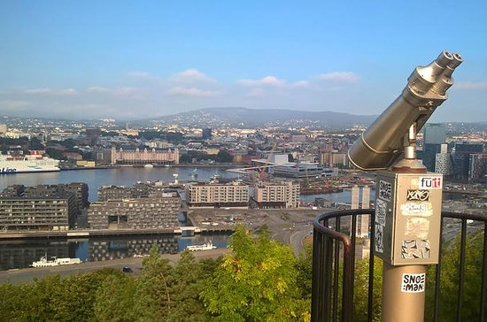 Full-Day Oslo Tour Including City...