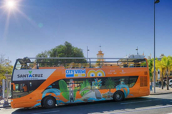 Bus Hop On Hop Off di Santa Cruz de