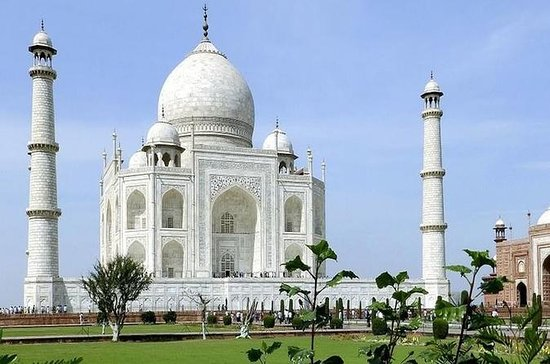 One Way Private Transfer Delhi to Agra Including Guided Tour