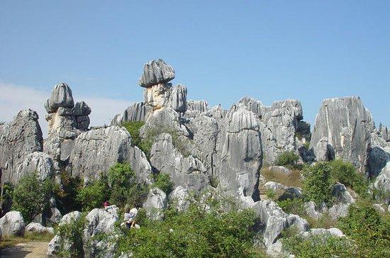 8 Tage Private Tour von Kunming-Dali...