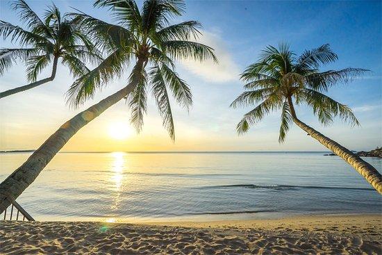 Samui Paradise Chaweng Beach Resort Spa Hk 852 H K 9 6 Updated 2018 Prices Hotel Reviews Thailand Tripadvisor