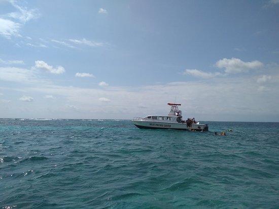 Caye Caulker, Belize: IMG_20180315_100256122_large.jpg