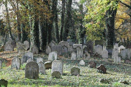 Starý židovský hřbitov Kolín