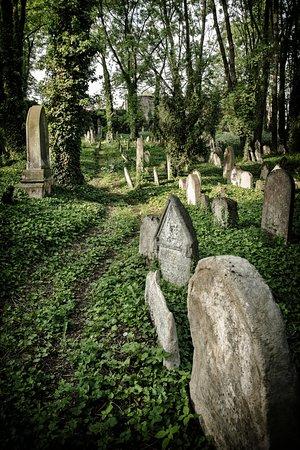 hřbitov kolín