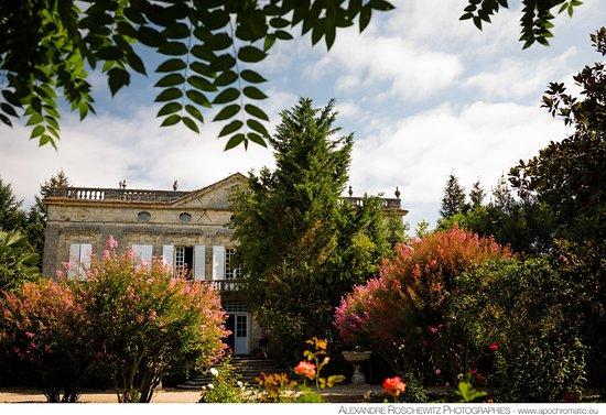 Château Latour Ségur Suites & Spa B&B (Lussac, France) : voir les ...