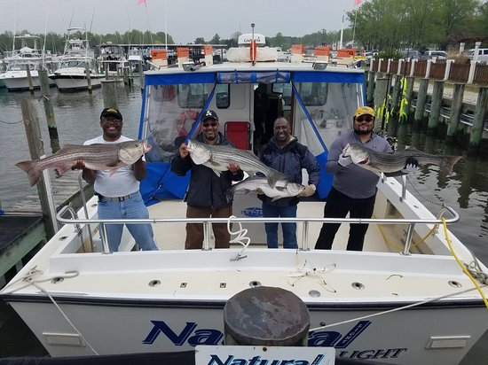 Stevensville, MD: Natural Light Charters