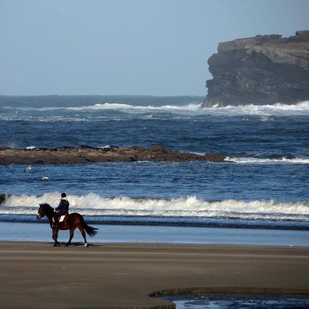 Ennis, أيرلندا: Horse riding on the beach 30 Mins from the Hotel