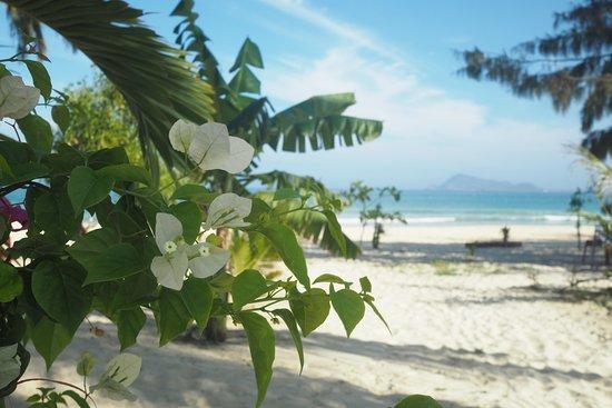 Song Cau Town, Βιετνάμ: Strand direkt vor dem Timothe Beach Bungalow