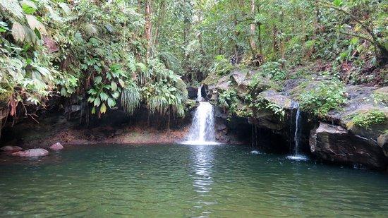 Capesterre-Belle-Eau, Guadeloupe : La petite cascade à droite a une source d'eau chaude.