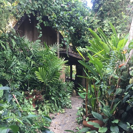 Baan Tammila: Lovely gardens; this is the path to all the rooms
