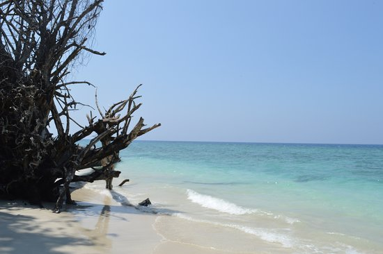 North Andaman Island, Hindistan: North Button National Park
