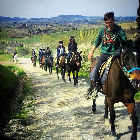 Horseback riding in Tuscany Wine Tasting
