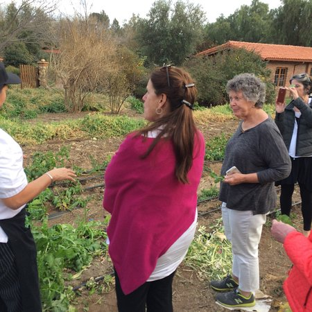 Baja Test Kitchen: Amazing Tour Of The Organic Gardens With Chef Denise,  Before Dinner