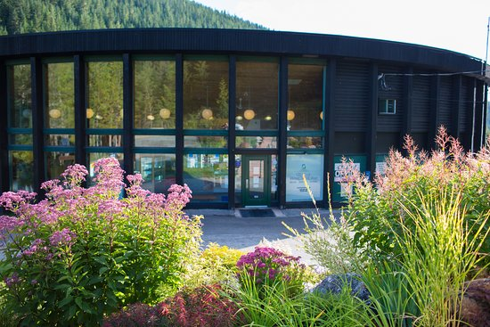 Nakusp Hot Springs Cedar Chalets: Welcome to the Nakusp Hot Springs