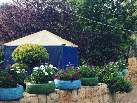 JD's Garden
